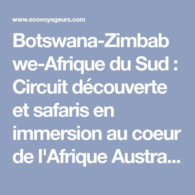Botswana-Zimbabwe-Afrique du Sud : Circuit découverte et safaris en immersion au coeur de l'Afrique Australe - Ecovoyageurs.com