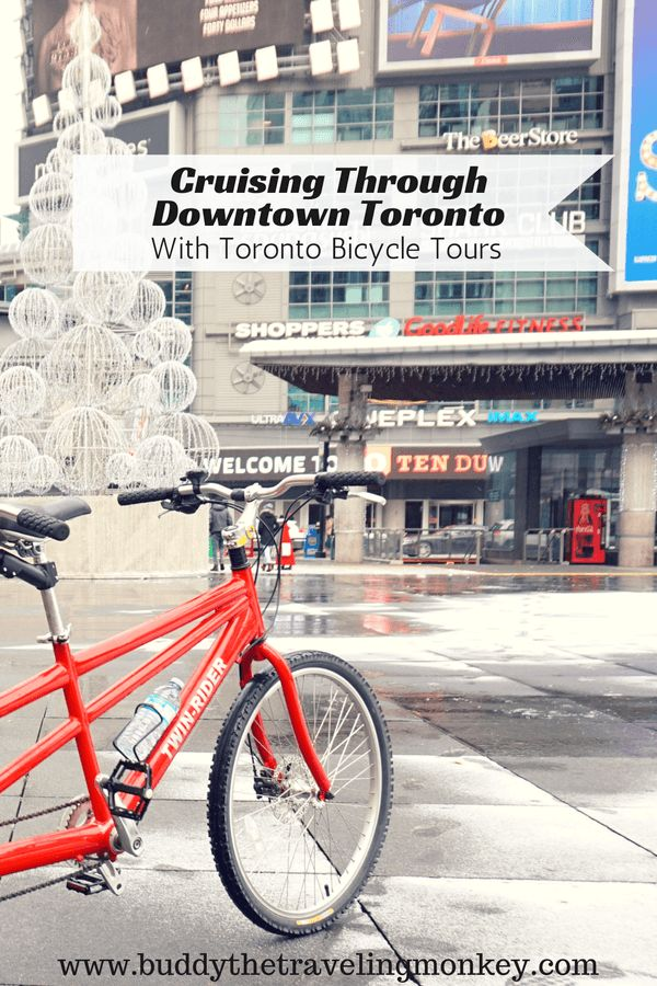@TorBikeTours Learn about the history and culture of Toronto on this fun bike tour that takes you through the heart of downtown Toronto.