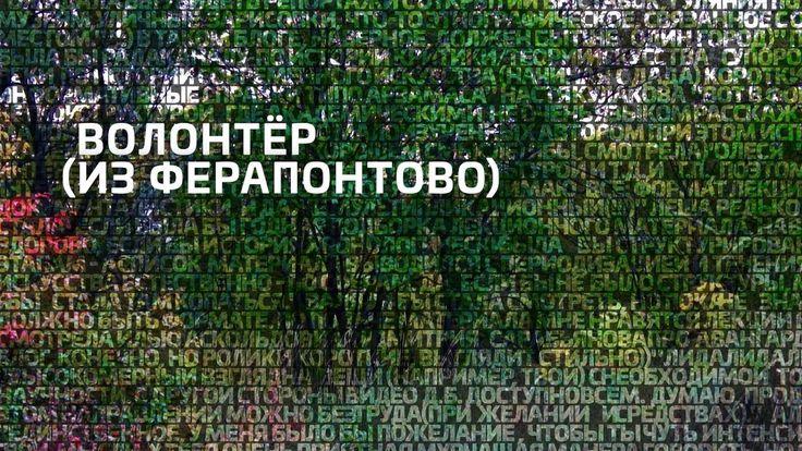 Волонтёр (из Ферапонтово)