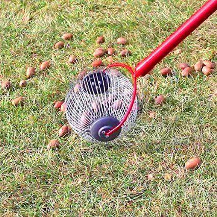 Amazon.com : Garden Weasel Medium Nut Gatherer : Nut Wizard : Patio, Lawn & Garden