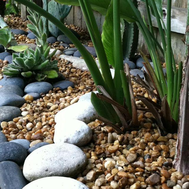 Low maintenance garden :) Rock and cactus