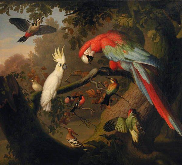 Венцеслаус Петер (1745–1829). Австрия. Декоративное панно. Птицы. 1790. Холст, масло
