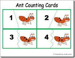 Ant Counting Activities