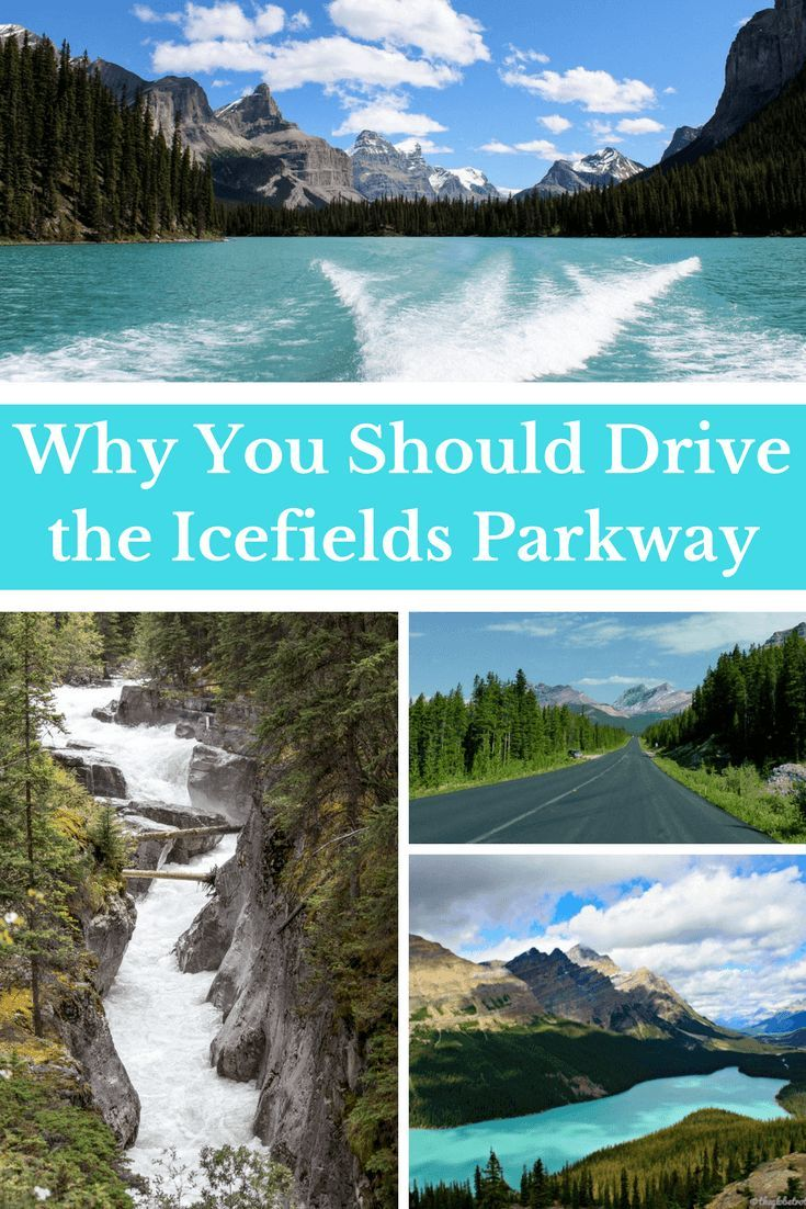 Why You Should Drive the Icefields Parkway | Travel Canada | Banff National Park | Jasper National Park | Canadian Rockies | Road trip