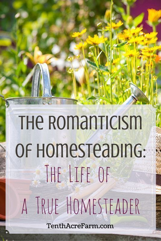 The homesteading life has a romantic quality to it. Is it really romantic? Here's how to achieve the state of mind of a true homesteader.
