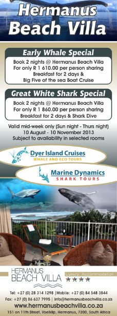 Dyer Island Cruises and Marine Dynamic Specials for Hermanus Beach Villa