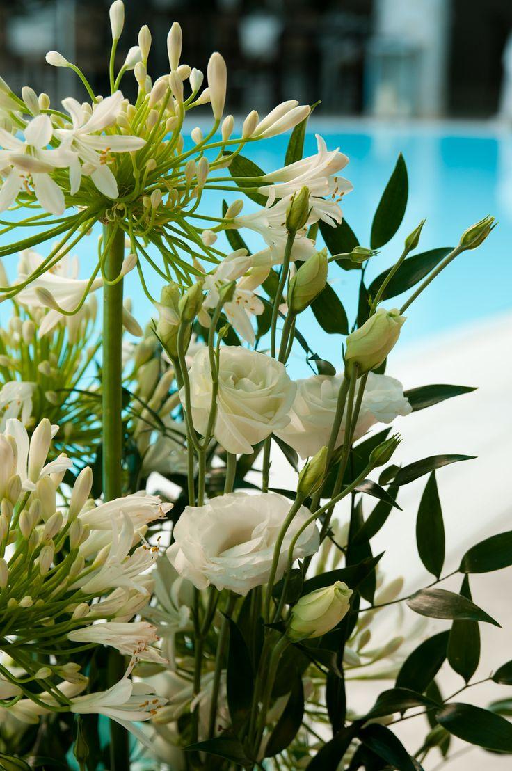 Composizione floreale piscina Plants, Flowers, Garden
