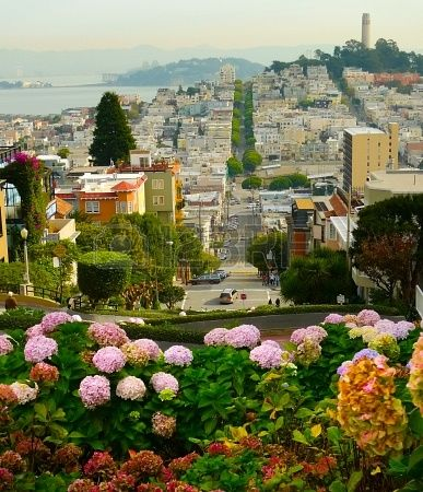 Lombard street on Russian Hill with Coit Tower in the Distance, San Francisco