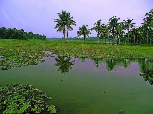 Beauty O Kerala