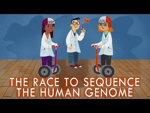 The race to sequence the human genome - Tien Nguyen | TED-Ed