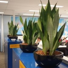 We believe in long term relationship and thus we give everything in our service so that customer never feels bad about our company and our products. http://www.planthiremelbourne.blogspot.com.au/2014/12/get-enjoyment-plant-hire-services.html