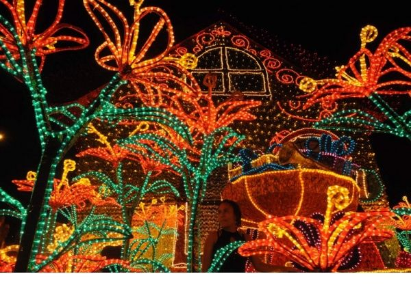 Spectacular illumination and more photos from the news