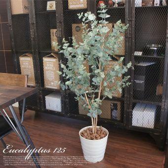 【楽天市場】洗練されたインテリア空間をプロデュース! ユーカリ125(Eucalyptus) 光触媒 イミテーショングリーン 日本製 送料無料:家具・インテリア・雑貨 ビカーサ