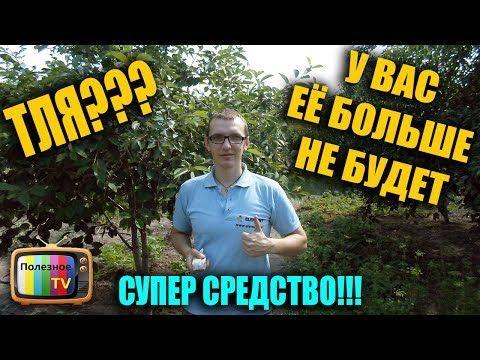 ТЛЯ У ВАС ЕЁ БОЛЬШЕ НЕ БУДЕТ СУПЕР СРЕДСТВО - YouTube