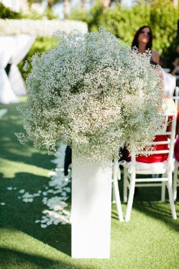 """Delicado e com um belo efeito ,arranjos feitos com essas flores ,chamadas """"chuva de prata"""",ficam lindos."""