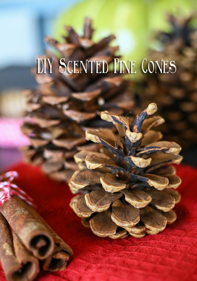 DIY Scented Pine Cones  Collect your pine cones. I like to give them a good spray with the hose to rinse off any dirt & whatever that might be on them if I collected them from the yard. Some people say to bake them to get them to open up. As a wife to a fire chief – I highly discourage this. Pine cones are great fire starters & effective kindling. I do not recommend putting them into a hot oven as any hidden pitch could become combustible & cause a problem.