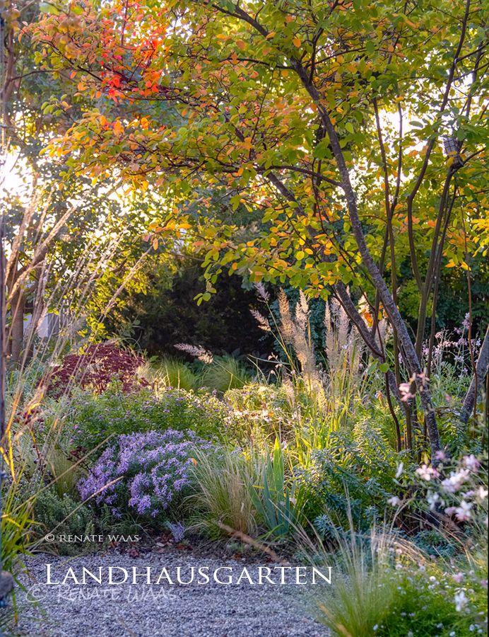 Garten planen und anlegen. Gartenplanung Renate Wa…
