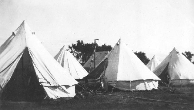 Tents, Napier Raceourse,  An image depicting pitched tents at Napier Racecourse used to house refugees following the Hawke's Bay earthquake of 3 February 1931. Photographer, unknown.   Collection of Hawke's Bay Museums Trust, Ruawharo Tā-ū-rangi, 4352 b