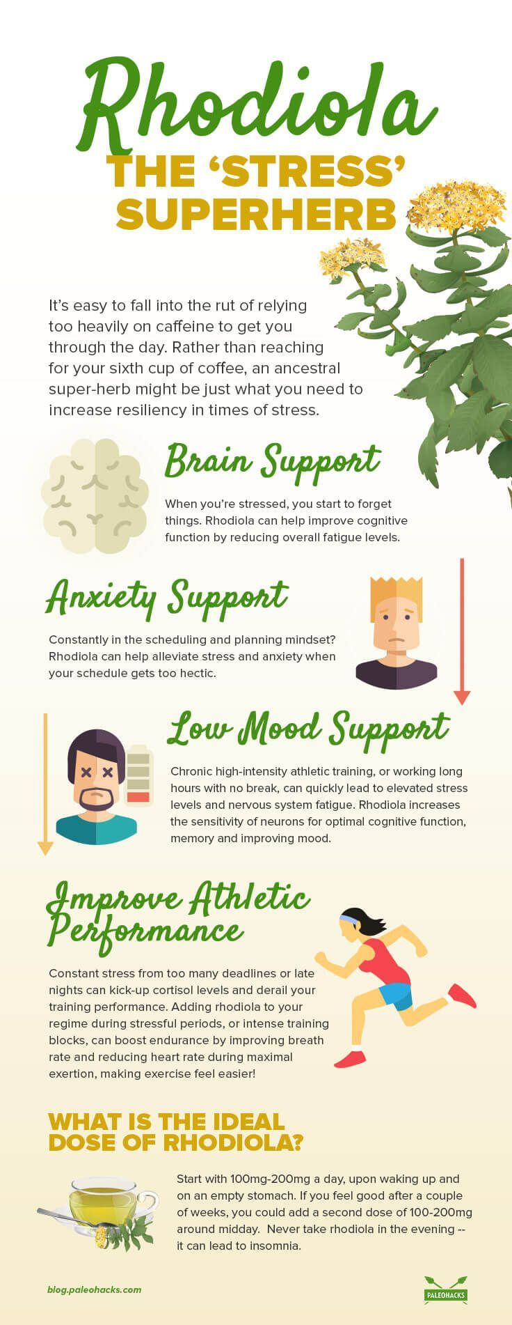 3 best weight loss strategies