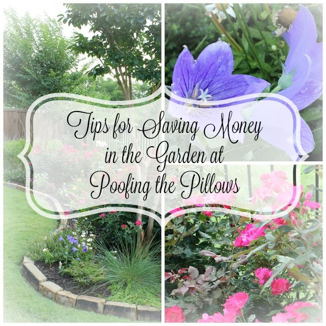 Tips for saving money in the garden. Ten on the 10th a collection of bloggers sharing ideas under $10.00.