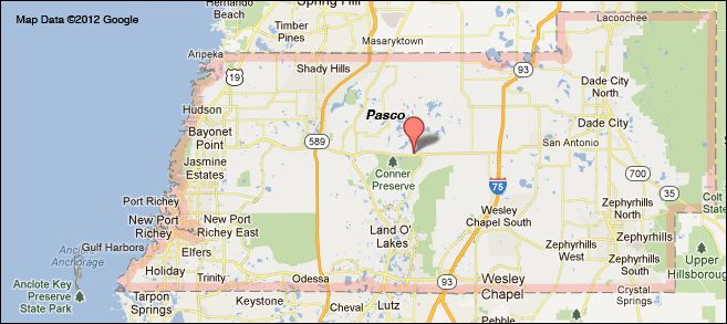 Singles dances pasco county florida Singles groups in New Port Richey - Meetup