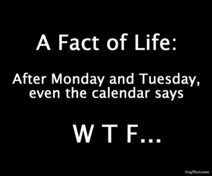 After Monday and Tuesday the calendar says WTF. Humor.