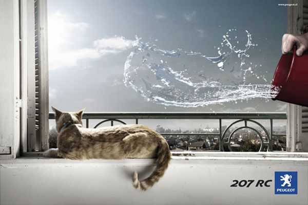 Peugeot Cat