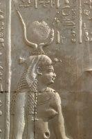 EGYPT HATHOR Banner