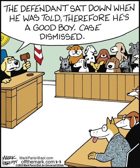 Hilarious Lawyer Dog Memes You Need to See C3ef0d609dea0132c98b005056a9545d