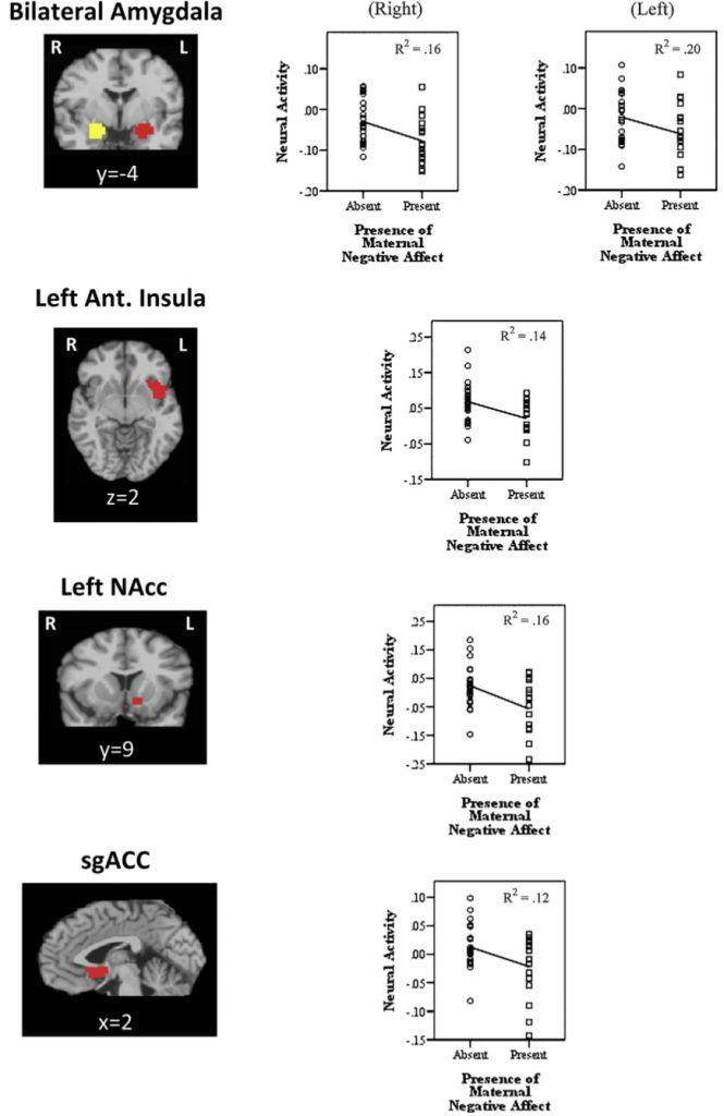 Негативное отношение матери угнетает активность нейронов системы вознаграждения в мозге подростков и влияет на оценку сверстников