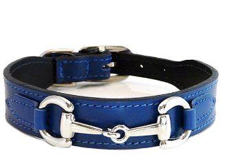 Gucci Style Royal Blue Designer Dog Collar and Leash