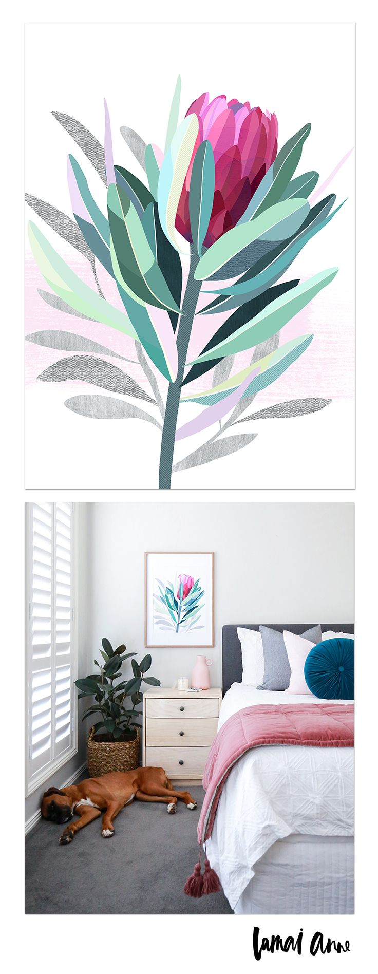 Protea limited edition giclee art print by Australian artist Lamai Anne. What a wonderful way of bringing the Australian outdoors and a real pop of colour into your home. Lamai's artwork is a collaboration of Native Flora and Fauna that encompasses her home and surroundings. Her illustrations of Australian Natives are meticulously brought to life through her digital art, and the composition between the seasons to create vivid, colourful and eye catching pieces.