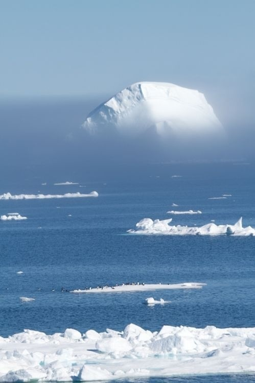 nunavut arctic winter games