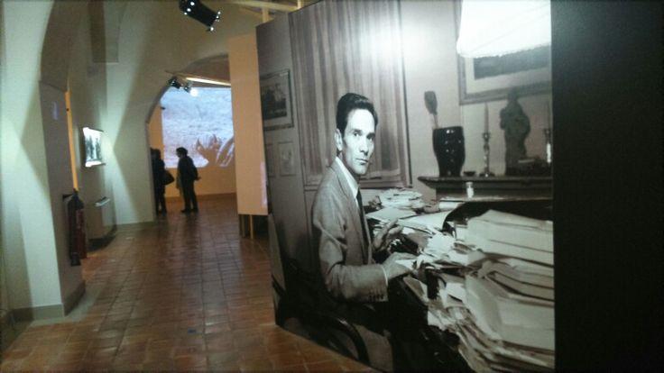 #Pasolini