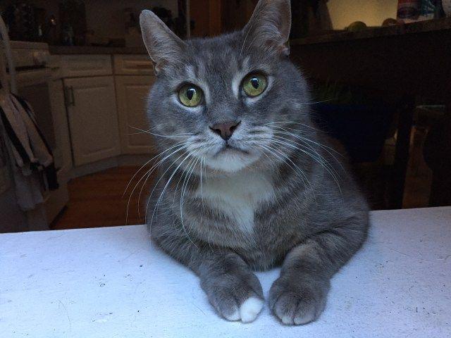 Biggie belongs to Caley from the Hanky Panky Sales Team