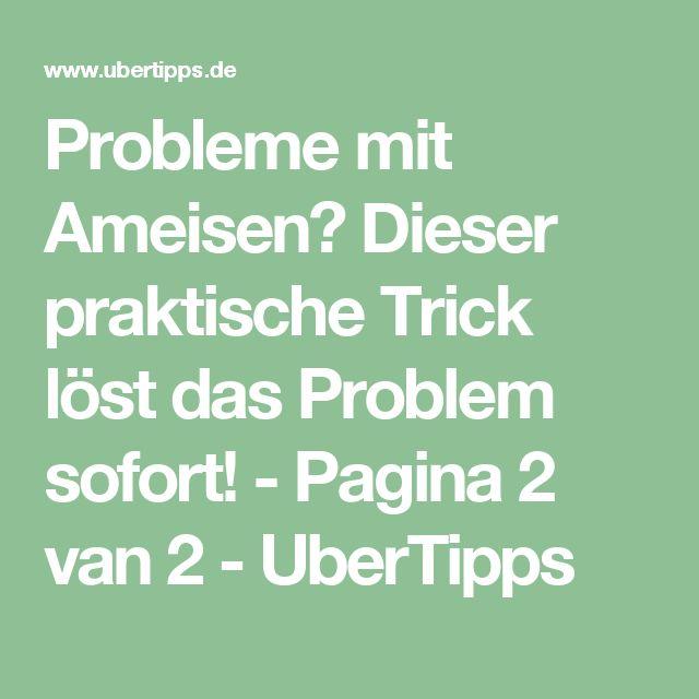 Více než 25 nejlepších nápadů na Pinterestu na téma Ameisen in der - ameisen in der küche was tun