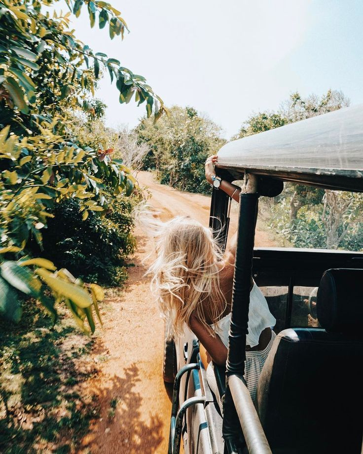 """21.7k Likes, 225 Comments - ELLIE BULLEN (@elsas_wholesomelife) on Instagram: """"Morning safari drive  searching for elephants, bears and leopards   we were lucky to encounter a…"""""""