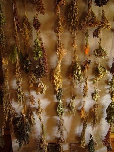sauna herbs