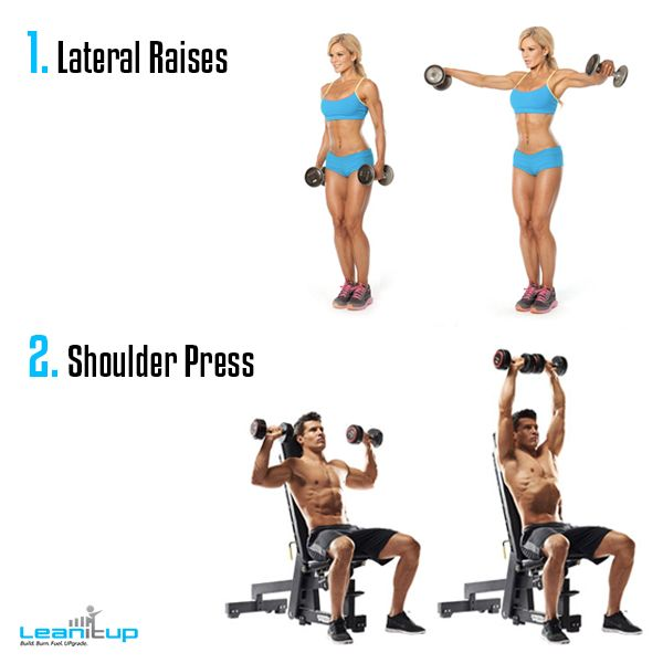 list of dumbbell exercises by muscle group dumbbell - 600×600