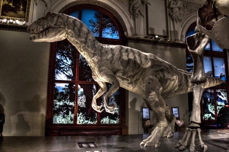 Robotic Allosaurus in Naturhistorisches Museum, Vienna