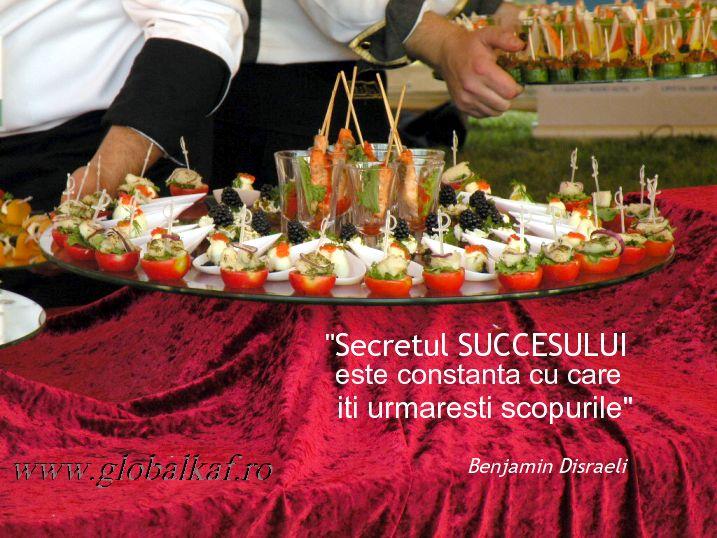 Secretul succesului este constanta cu care iti urmaresti scopurile - Benjamin Disraeli