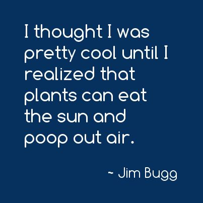 I thought I was pretty cool until I realized that plants can eat the sun and poop out air. -Jim Bugg