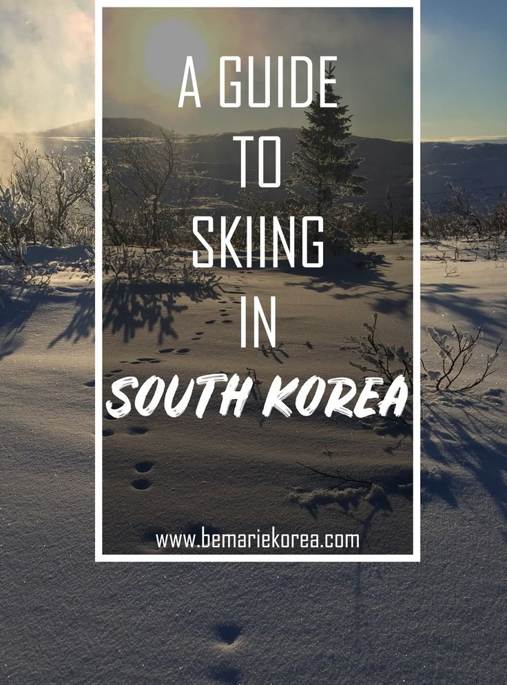 Skiing and snowboarding is the best winter activity you can do in South Korea. With the mountains being so close to the capital Seoul, you can easily go for a one or two day trip.