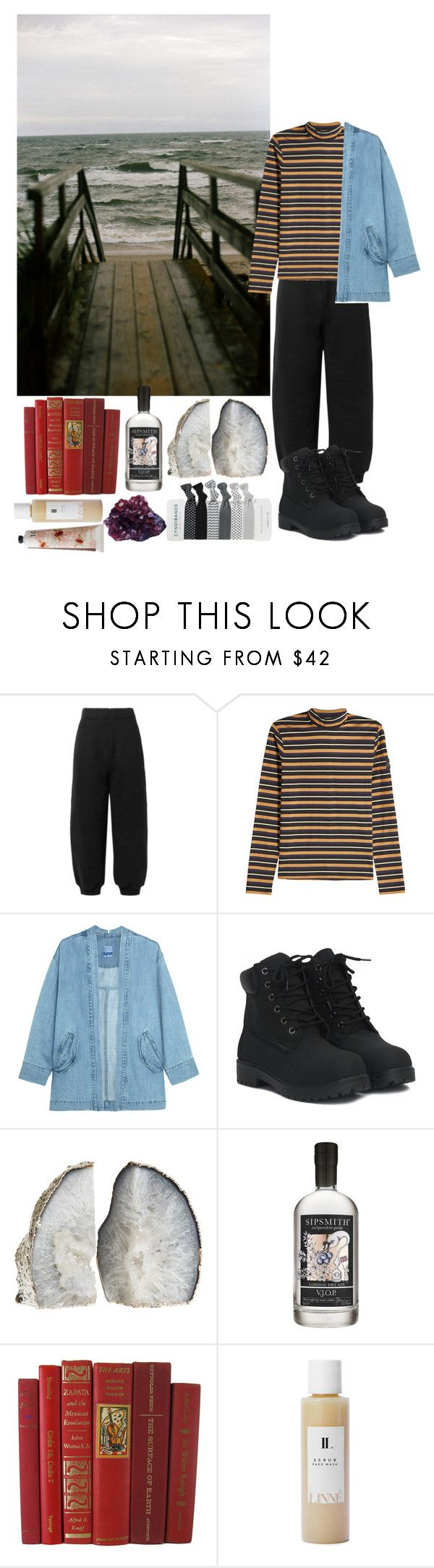 Untitled #445 by danielagreg on Polyvore featuring Steve J & Yoni P, T By Alexander Wang, STELLA McCARTNEY, Linne, TokyoMilk, Sipsmith and DK