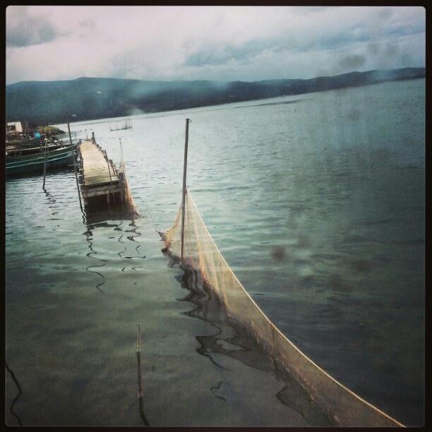 La laguna di Orbetello in una giornata uggiosa  Orbetello lagoon on a gloomy day