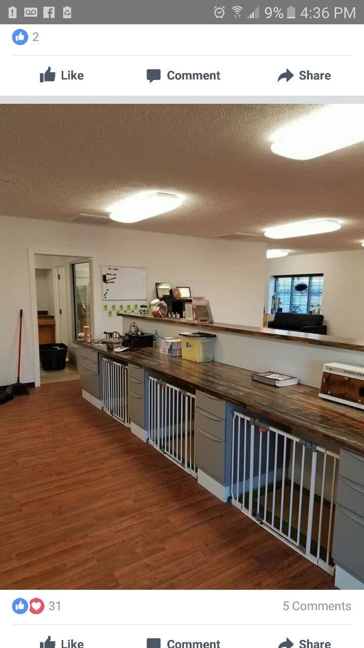Image result for dog grooming salons in small areas | Dog ...