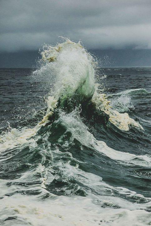 @lijensen REVERSE WAVE!!