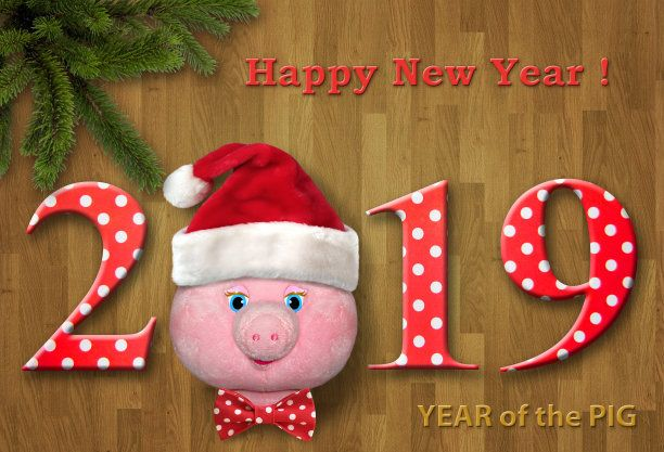 Baby New Year Xmas 2019 Greeting Ecard Image Happy New Year Photo Happy New Year Newyear