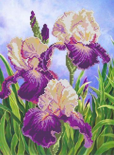 Ирисы SА-052 / Картины Бисером / Схемы для вышивки бисером / Схемы на Zinzilin.com