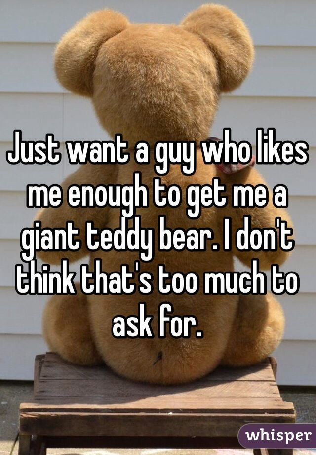 Just want a guy who likes me enough to get me a giant teddy bear. I don't think that's too much to ask for.